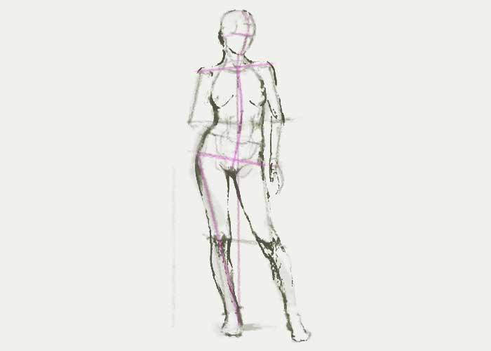 Dibujando la Figura Humana  Cmo Dibujar una Figura