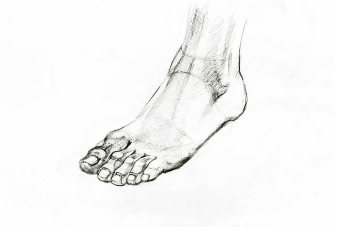 how to draw webbed feet